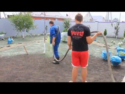 Вопрос: Как сделать жидкий газон своими руками, реально ли это?