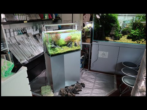 ADA Aquascape Workshop At Aqua Revue - IAPLC Rank 3 Hidekazu Tsukiji