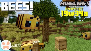 BEES! | 19w34a Snapshot Features & Changes - Minecraft 1.15
