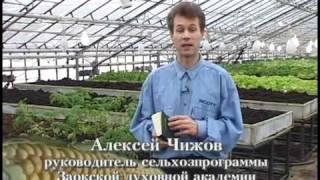 Ogorod.UA - Технология доктора Миттлайдера - часть 2(Учебный курс об оригинальном и эффективном способе выращивания овощей по методу доктора Миттлайдера. Этот..., 2010-08-18T19:25:52.000Z)
