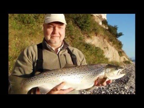 Kystfiskeri efter havørred på Stevnsklint