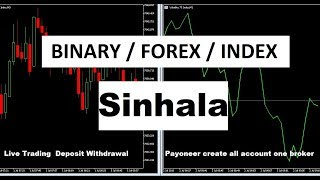 Binary Option / Forex / Volatility live trading and transactions review Sinhala