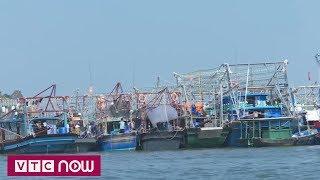 Quảng Ninh kêu gọi tàu thuyền vào nơi tránh trú bão   VTC1