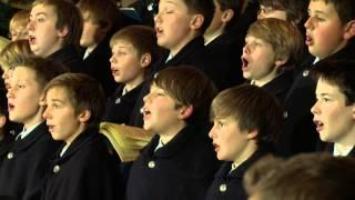 Wiltener Sängerknaben, Academia Jacobus Stainer, Johannes Stecher: Wie soll ich dich empfangen (WO)