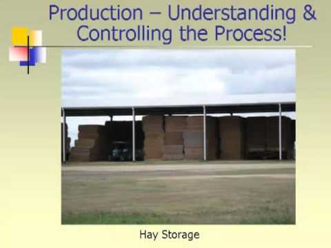 Feedlot industry investment
