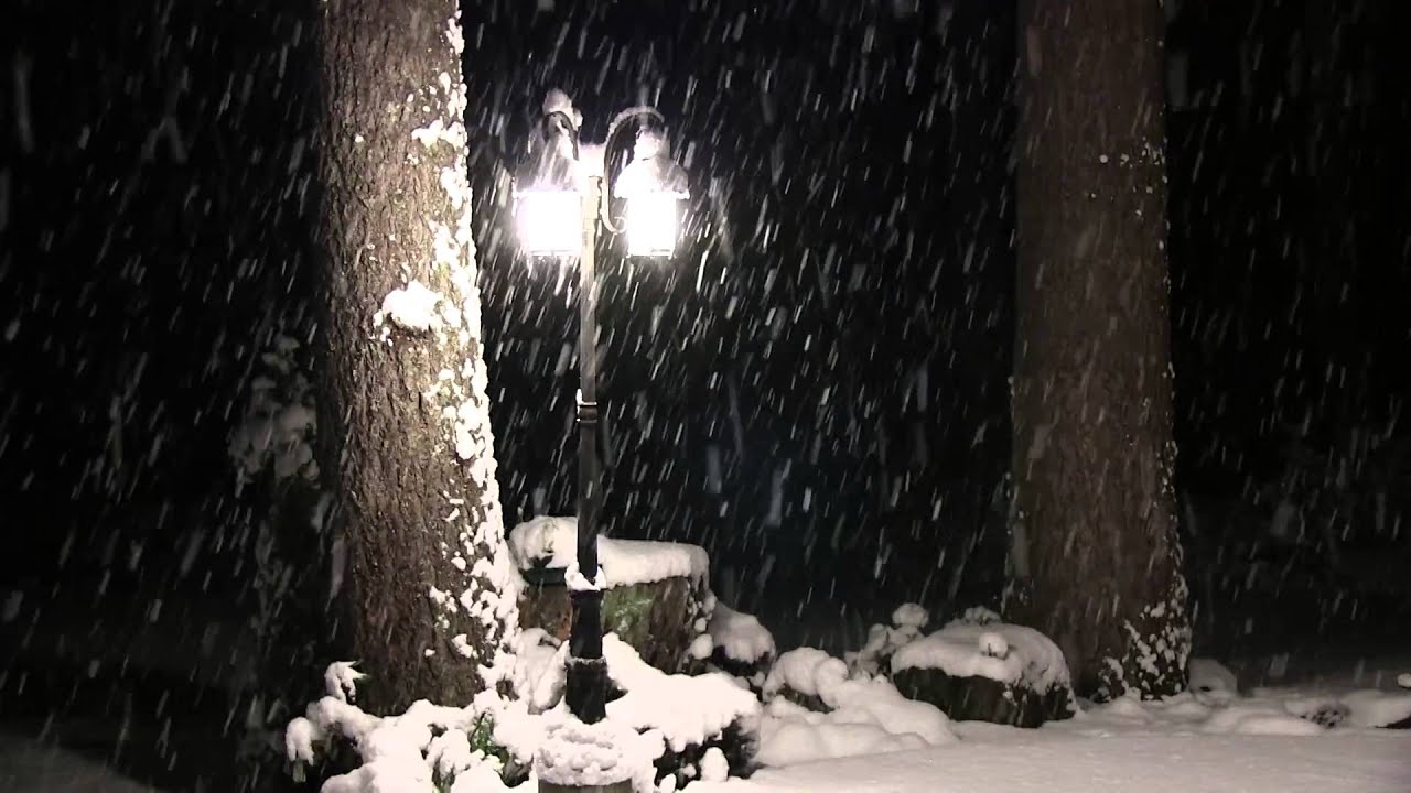 Free Snow Falling Wallpaper Snow Falling At Night Without Music 4 Hours Youtube