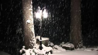 Snow Falling at Night Without Music - 4 Hours