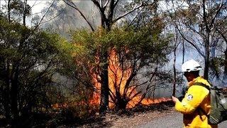 Australie: le combat des pompiers contre