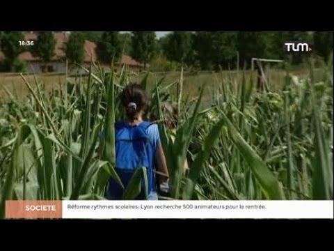 Idée sortie: le labyrinthe de maïs de Pressin streaming vf