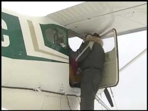 Eye on Iditarod 2013: Iditarod Air Force