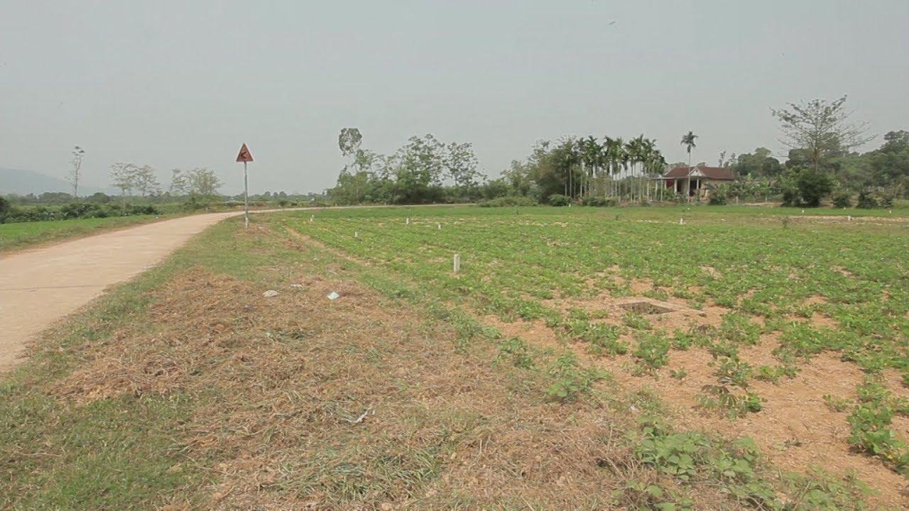 Nhiều địa phương ở Thừa Thiên – Huế vi phạm Luật đất đai
