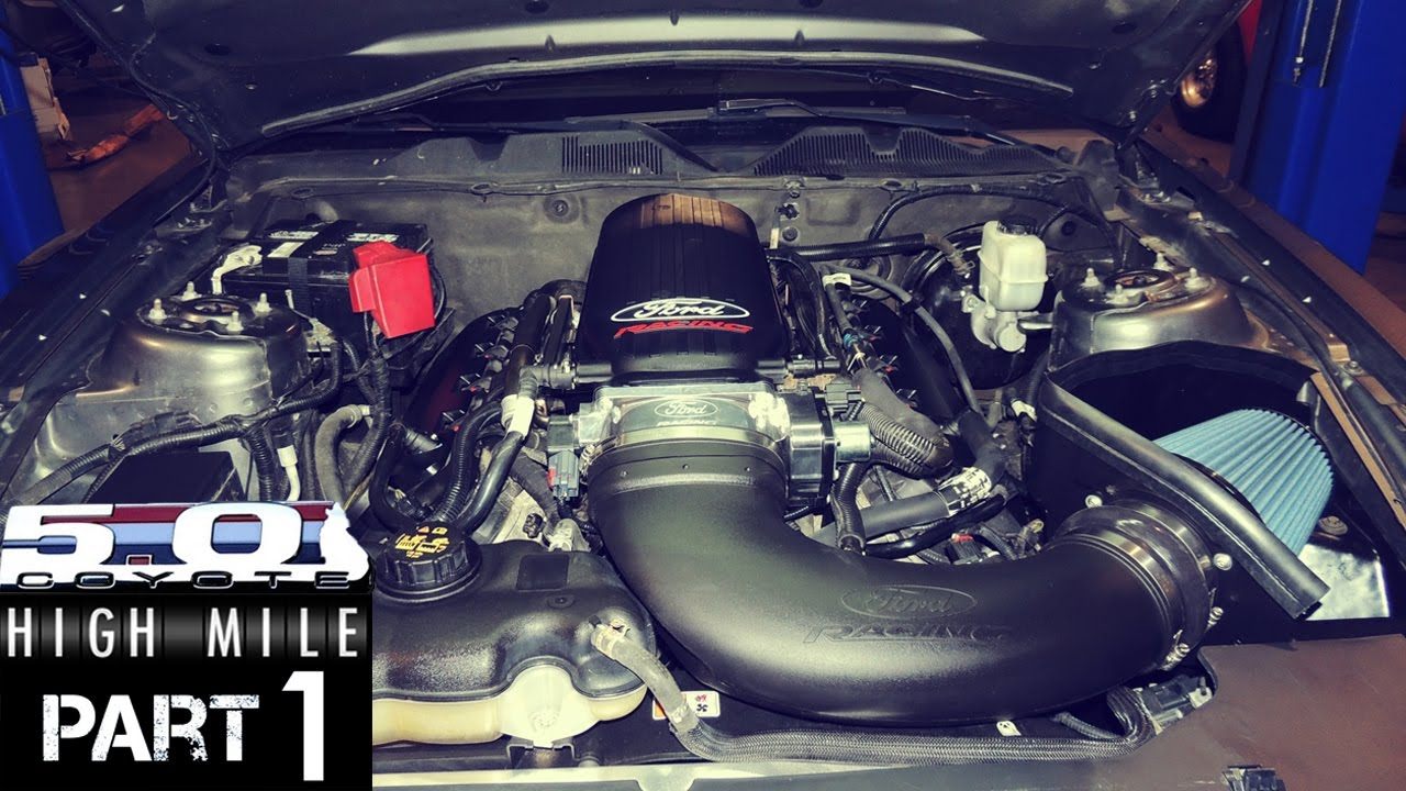 High mile coyote mustang episode 1 induction oil pump gears cooling mods