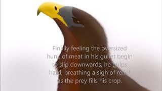 Prince Gulps a Squirrel (Eagle Vore Audio)