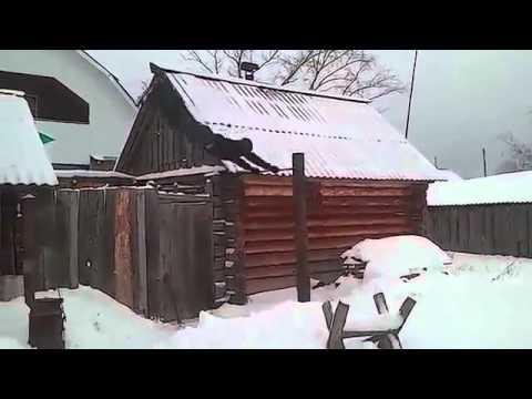 Архиепископ Читинский Евстафий прибыл в Узбекистаниз YouTube · Длительность: 2 мин41 с