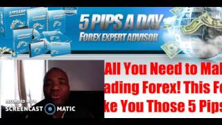 5 pips A day Forex EA review - Honest review