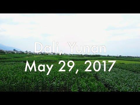 Dali Old Town & Bai Zu Village - Vlog #34