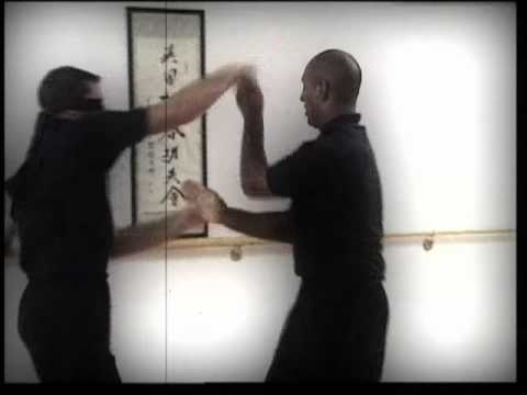 Wing Chun Overview