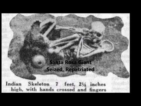 Real Photos of Ancient Nephilim Skeletons in North America
