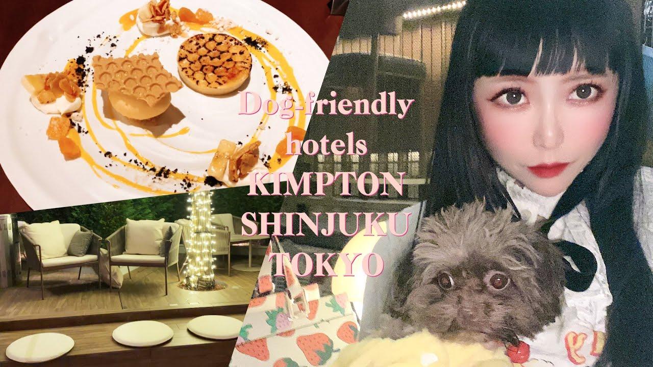 ENG _sub🍒新宿🇯🇵SHINJUKU🍒ペットを連れて行けるホテル🐩キンプトン新宿東京🍒DOG FRIENDLY HOTELS【#37】