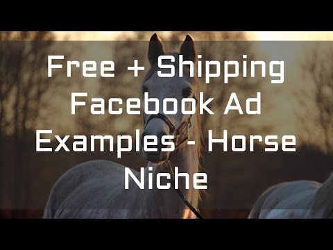 Free + Shipping Facebook Ad Examples – Horse Niche