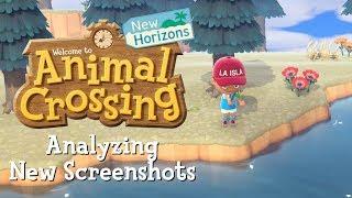 Analyzing Brand New Animal Crossing: New Horizons Screenshots!