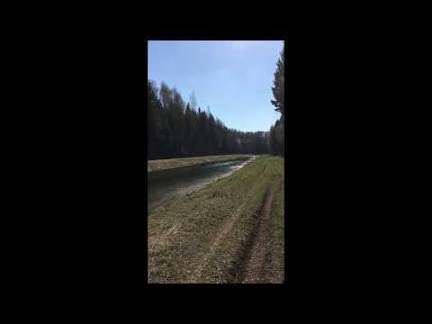 5 Птичьи трели на канале Волга-Уводь