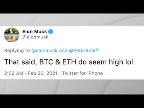 ELON MUSK Letzte Crypto Tweet