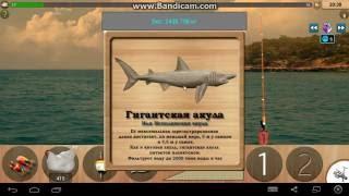 Топ 3 рыб для фарма опыта и денег. | Реальная Рыбалка.