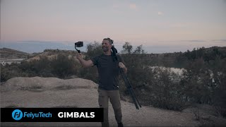 What gimbal to choose?
