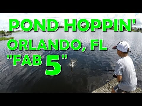Orlando Pond Fishing Challenge | Catching Bass From The Shore