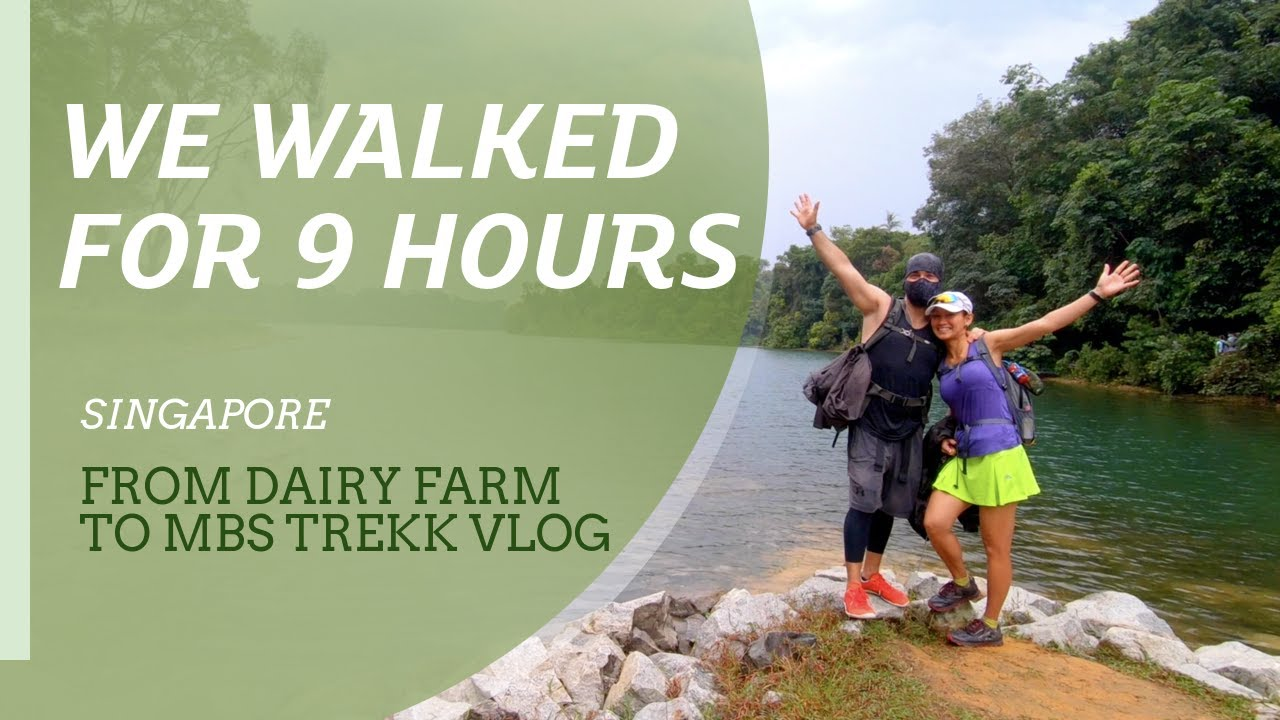 We walked for 9 hours trekking in Singapore. From Dairy Farm to Marina Bay Sands.