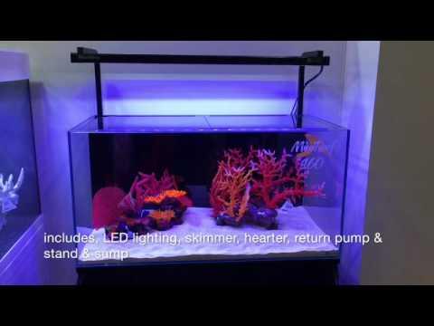 One Mini Reef 160 At Living Reef Aquariums