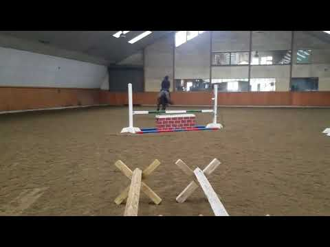 Cudo First Jump School 2.17.18
