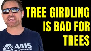 Why It Is Important To Remove Cables From Tree Staking