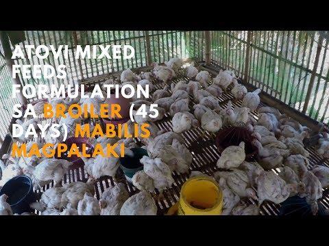 Atovi Mixed Feeds Formulation sa Broiler (45 Days) Mabilis Magpalaki