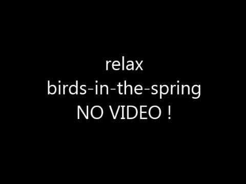 birds-in-the-spring - 25 min relax