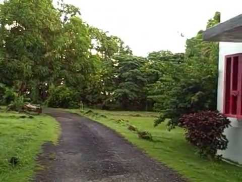 Welcome to Xavier Micronesia.AVI