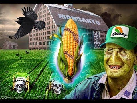 "Robert Schooler ""GMO Debate: Cornell Propaganda"""