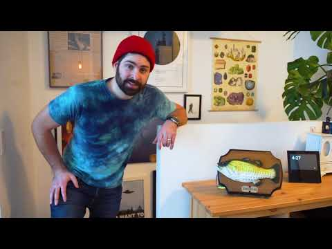 DIY Billy Bass ft. Alexa Explained!