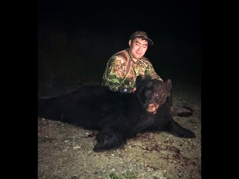 WI Public Land Black Bear Hunt 2017