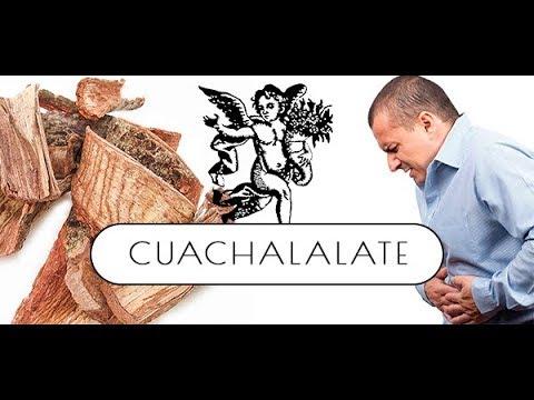 El cuachalalate sirve para bajar de peso
