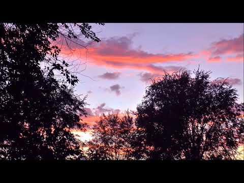 Johann Sebastian Bach Orchestral Suite no. 2 in B minor, BWV 1067 - 3. Sarabande