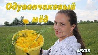 Одуванчиковый мёд (архив 2008)