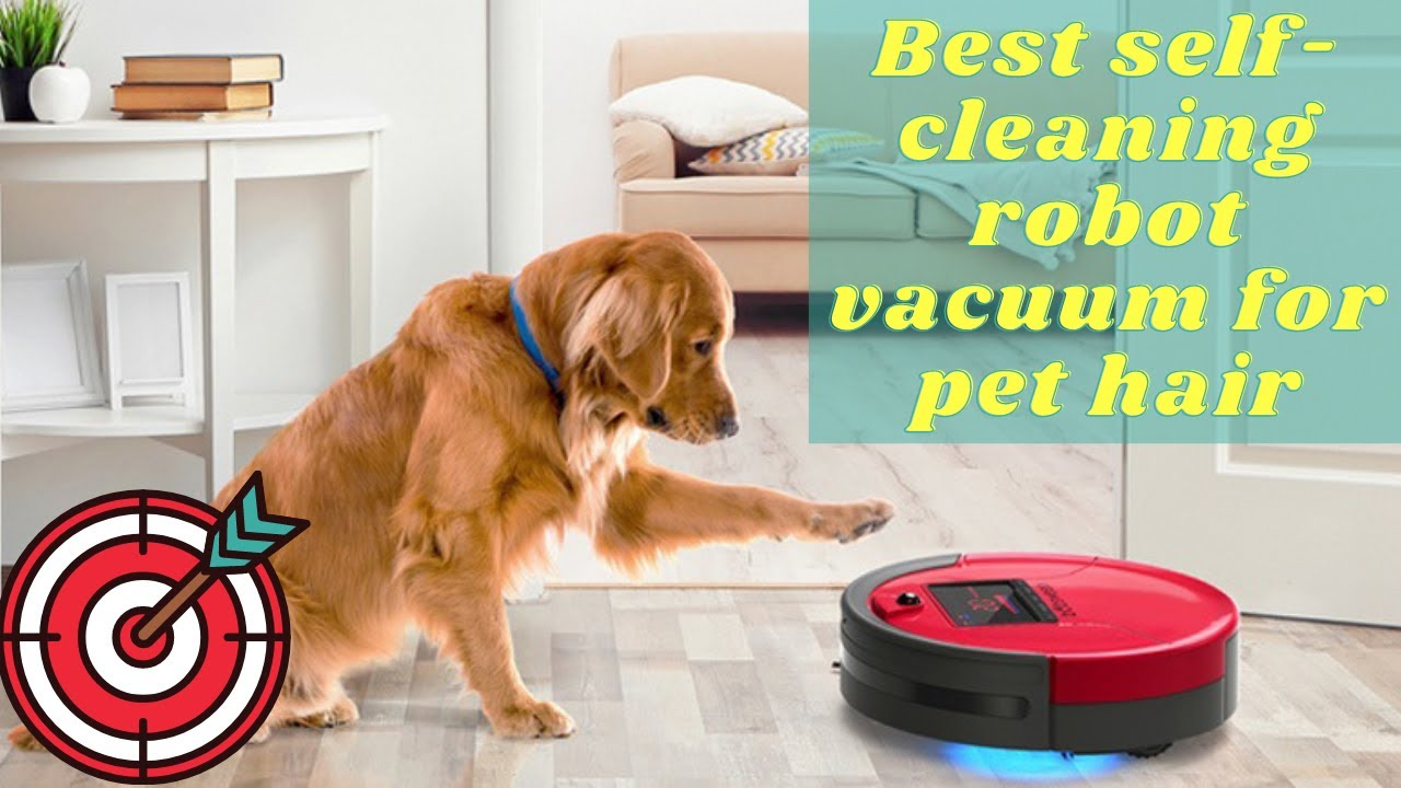 Best Robot Vacuum For Pet Hair And