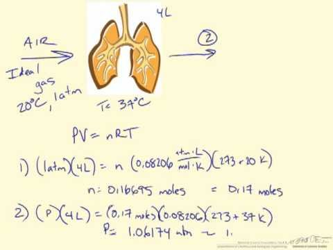 Ideal gas law lung example (bio) youtube.