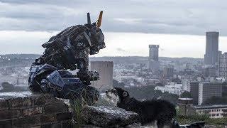 他可能是我看过的最有痞子气的机器人,速看科幻电影《超能查派》 thumbnail
