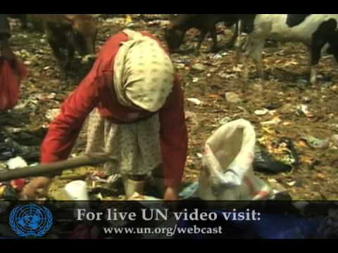 Goal 1: Eradicating Extreme Poverty & Hunger (MDG)