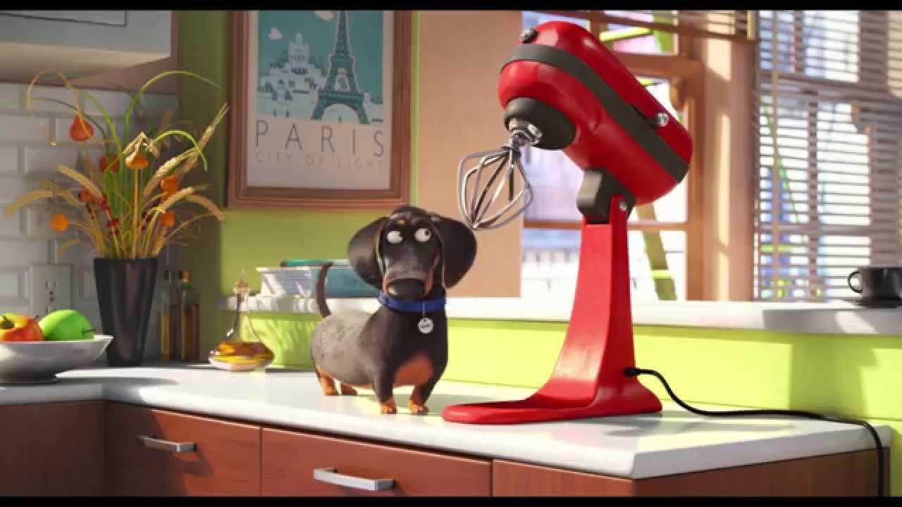 Tajný život mazlíčků (The Secret Life Of Pets) - oficiální český HD trailer