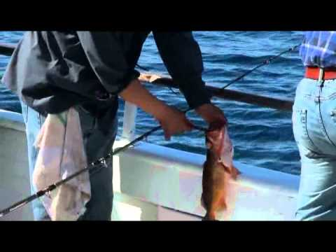 Fishing the gentleman with kevin brannon and reel anglers for Fishing youtube channels