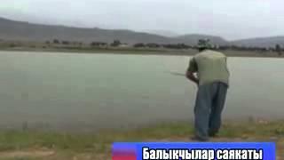 Рыбалка в Бишкеке